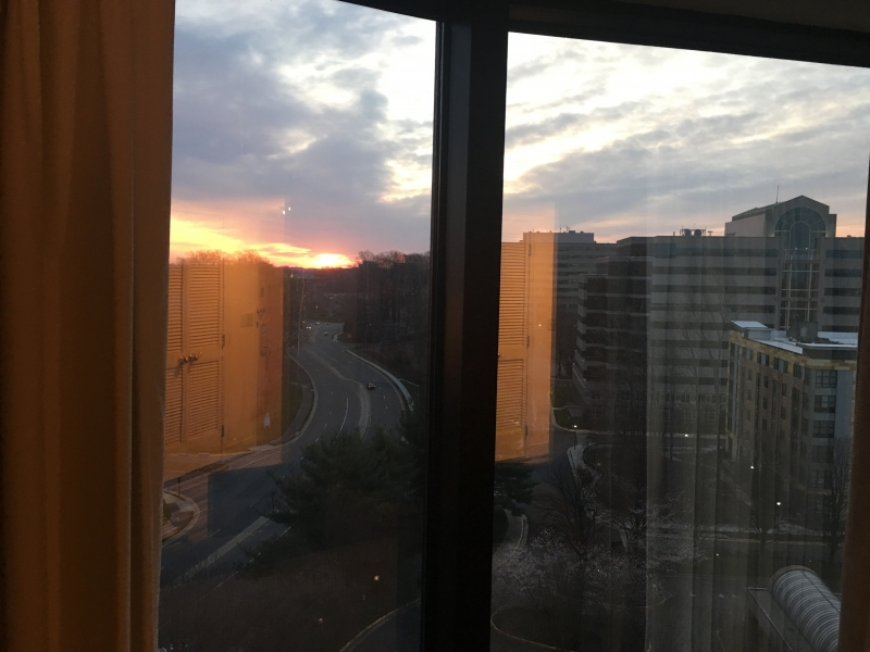 hyatt fairfax view