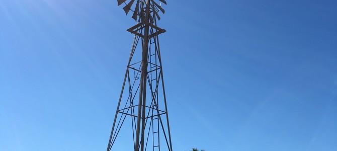 Windmills on the Plains