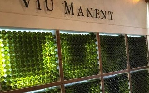 Lunch at VIU Manent Winery in the Colchagua Valley